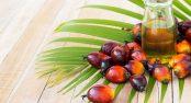olej-palmowy